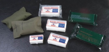 Compress wound dressing